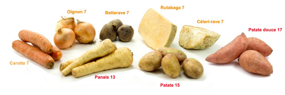 Guide des légumes racines
